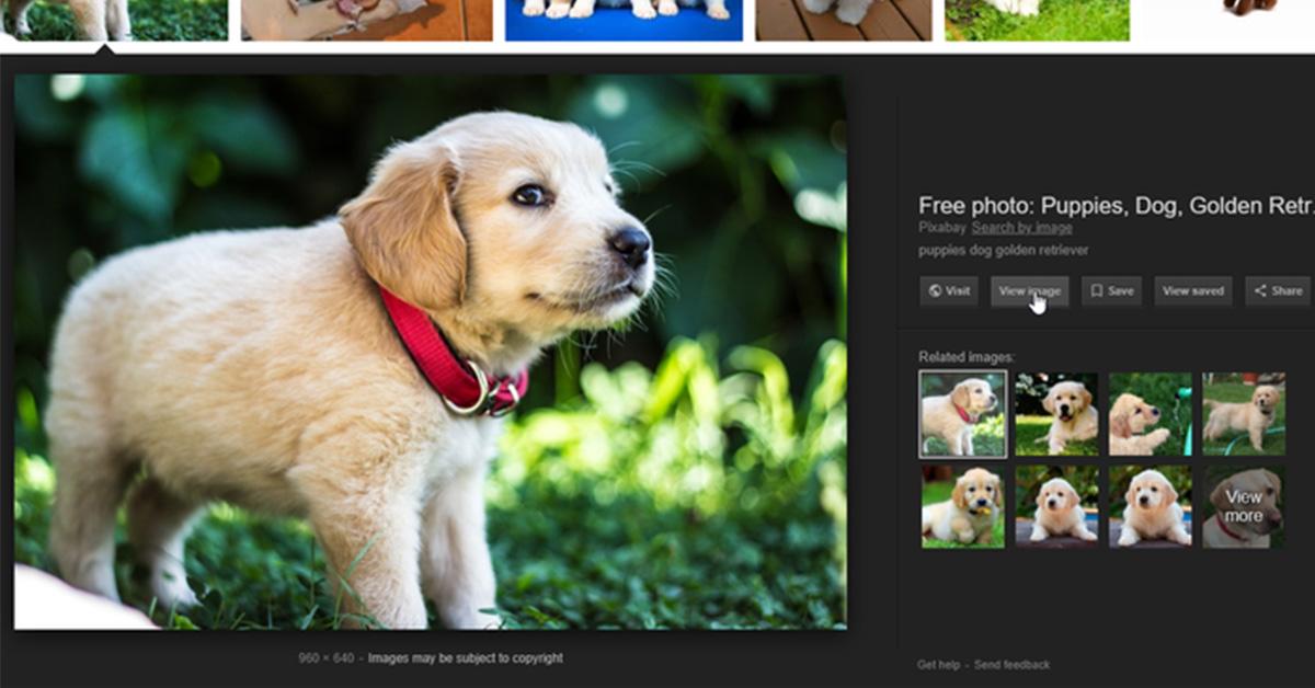 Google: come riavere il pulsante ''Visualizza immagine''